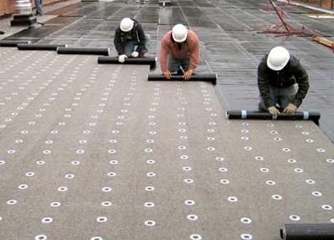 image01 & Eagle Roofing Services Seattle Tacoma memphite.com